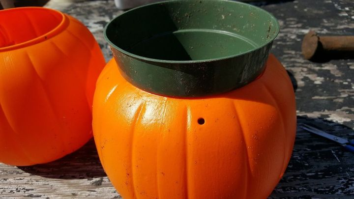 concrete pumpkin flower pot for autumn and halloween