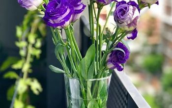 what your fresh cut flowers want you to know