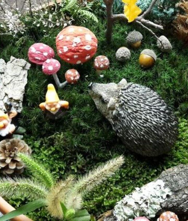 my miniature fairy garden