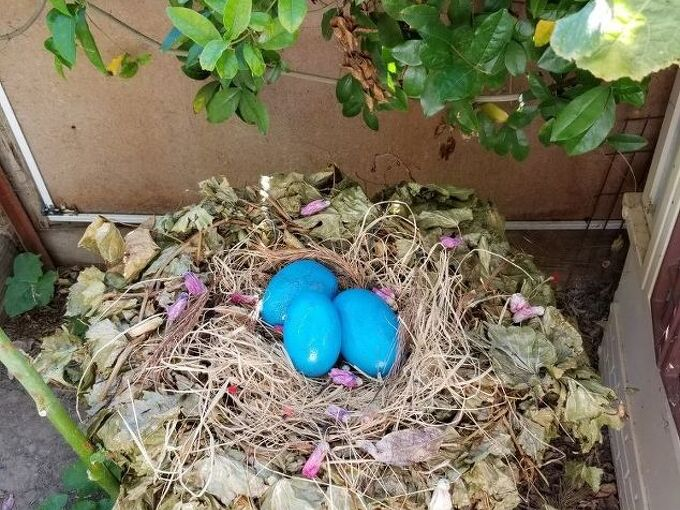making of a whimsical nest