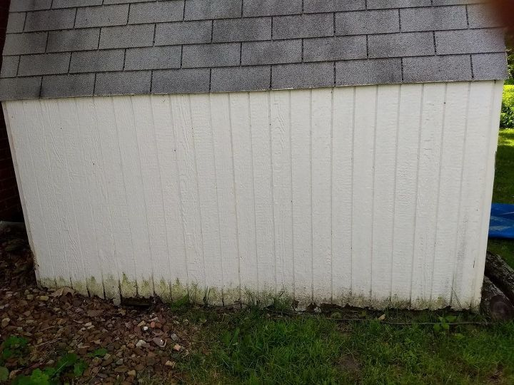 How do I repair the rotting siding on my shed without replacing it