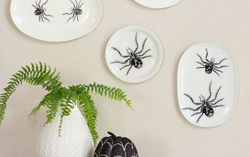 halloween spider plate wall