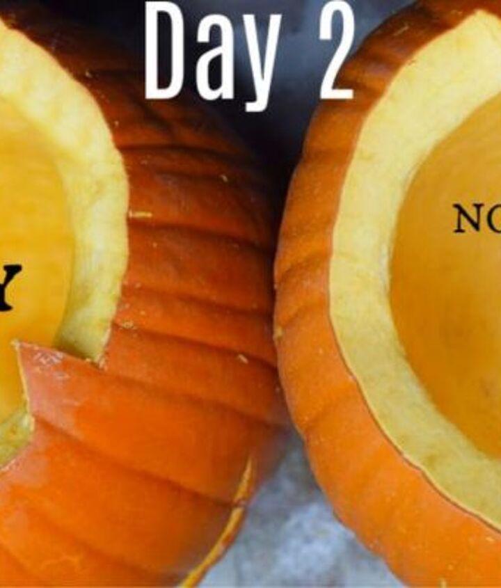 homemade carved pumpkin preserving spray no bleach