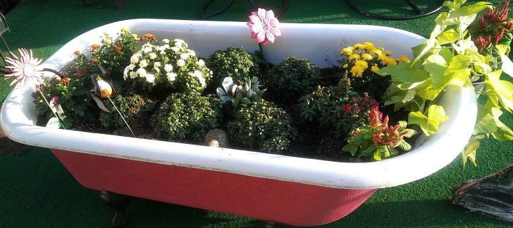 q ow to keep my pink cast iron tub wintertime plant pretty in memphistn