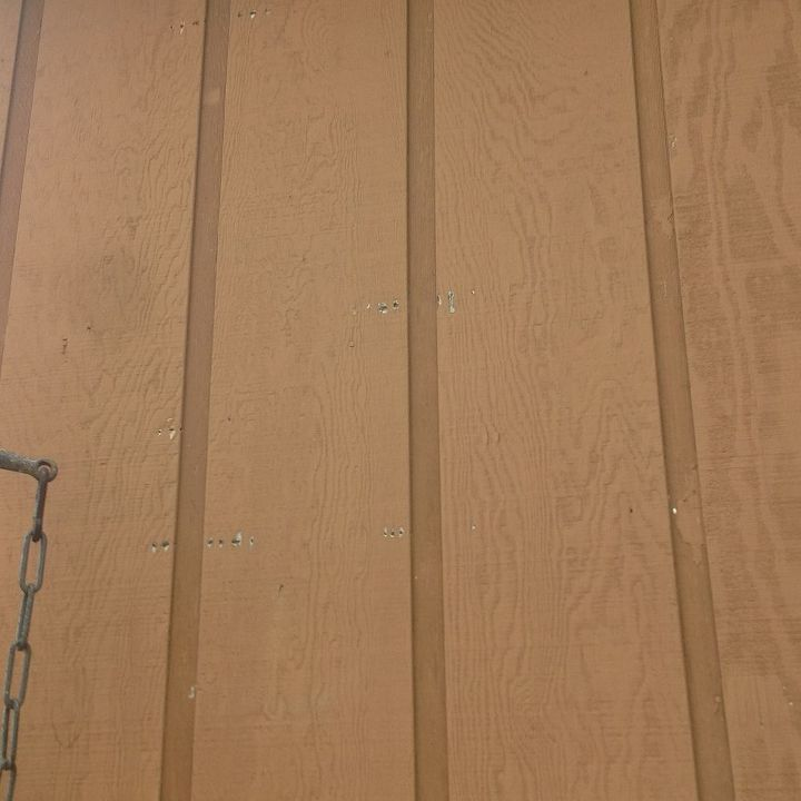 q how do i prevent woodpeckers and sapsuckers for eating my house