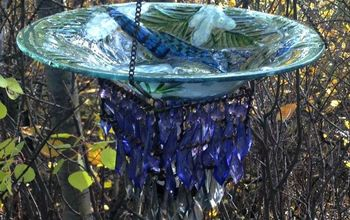 DIY Up-Cycled Blue Jay Bird-Feeder or Bird-Bath