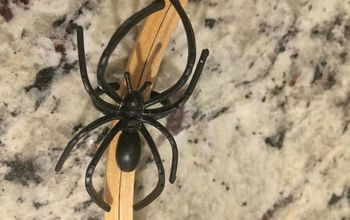 inexpensive halloween project to do with the little ones, I used a large Black spider