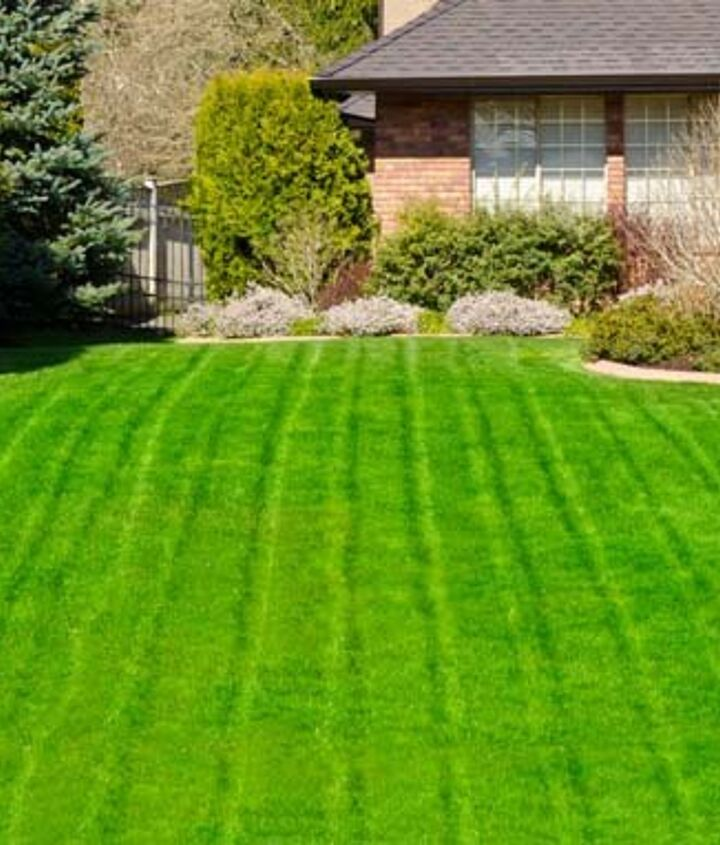 lawn care practices that guarantee of an attractive garden