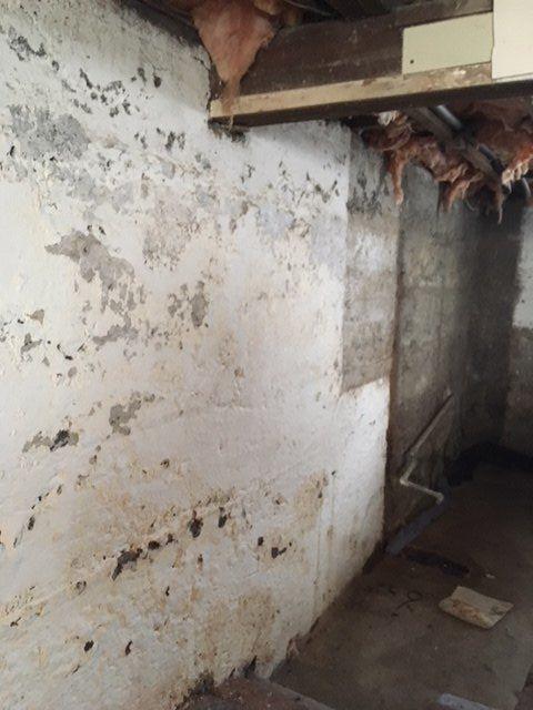 q how do i make my basement walls nice