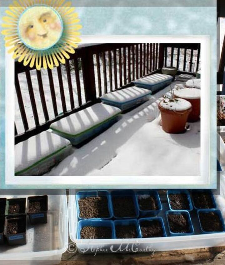 Winter Sowing extends you planting season.