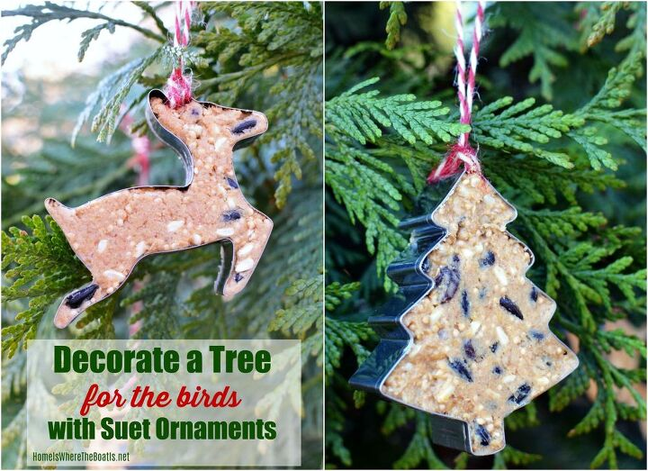 trim a tree and feed the birds with suet ornaments