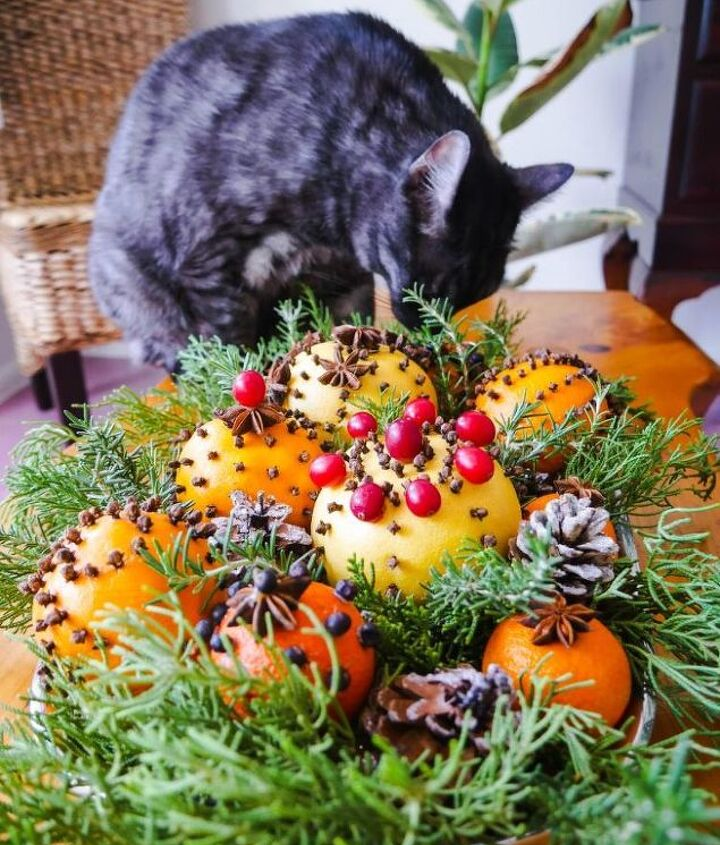 homemade natural christmas decorations using citrus fruits spices