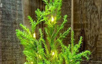 Tiny Christmas Trees With Lights - Quick and Easy Decor