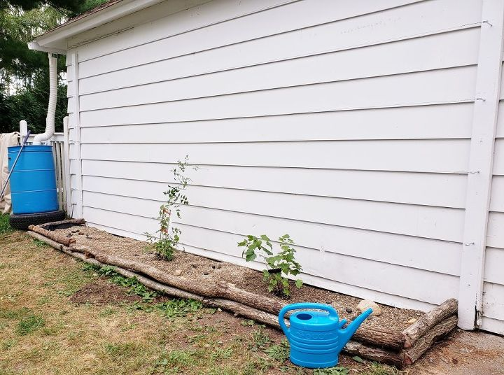 using logs to border your plants making a wall trellis