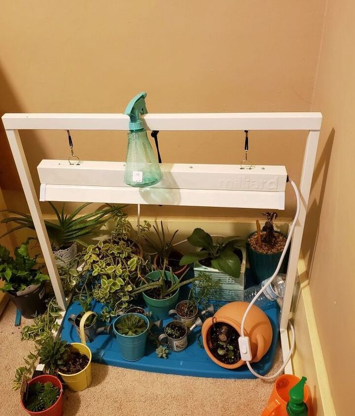 a better place for my plants