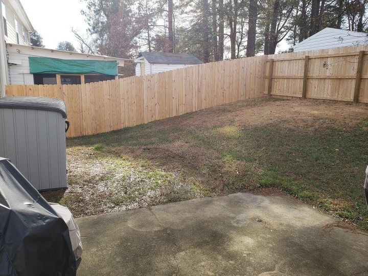 How can I fix this backyard drainage issue? | Hometalk