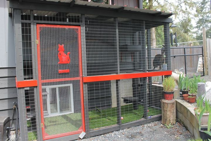How to Build a Great Outdoors Cat Catio DIY | Hometalk