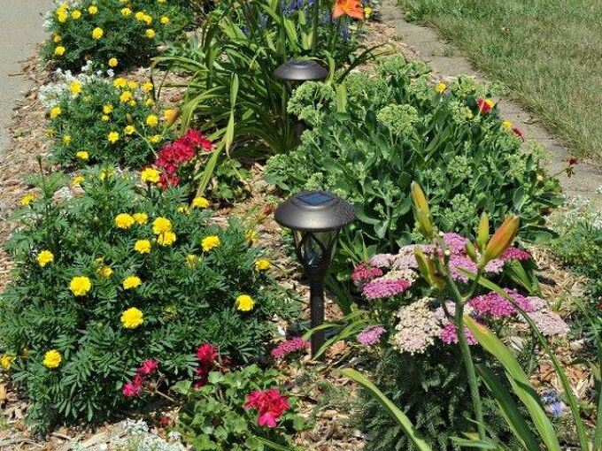 how to plan and plant a flower garden