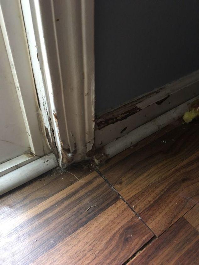 q how can i fix door jamb