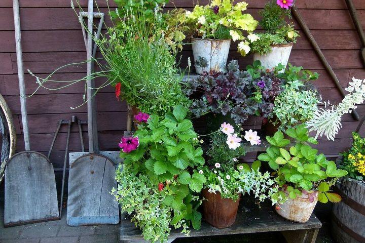 15 Quirky Fun Diy Garden Ideas Hometalk