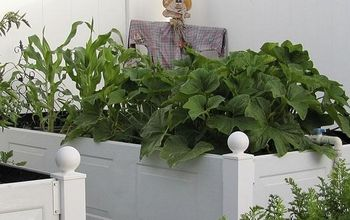 How to Make a Garden Box for Your Best Yard Ever