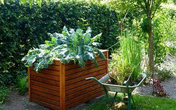 The Best DIY Raised Garden Bed Ideas