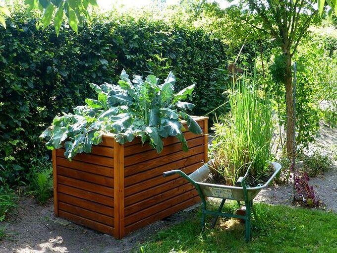 the best diy raised garden bed ideas, Raised Garden Bed pixabay