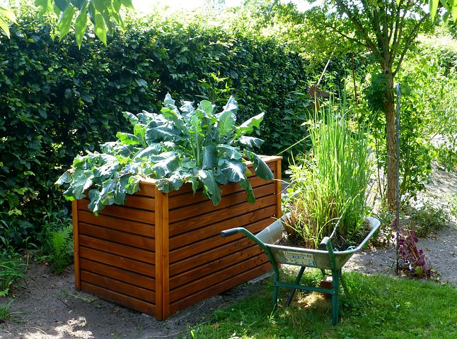 Raised Garden Bed (pixabay)