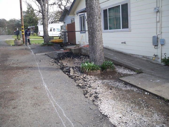 Front Yard Landscape Transformation (Michelle Ferrari)