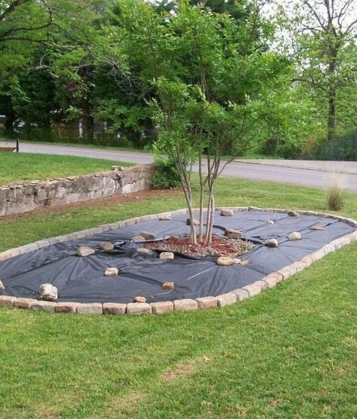 Front Yard Project (Kathleen)