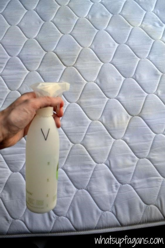 How to Clean Pee from a Mattress (Katelyn Fagan)