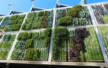 The Most Ingenious Vertical Garden Ideas For Small Spaces
