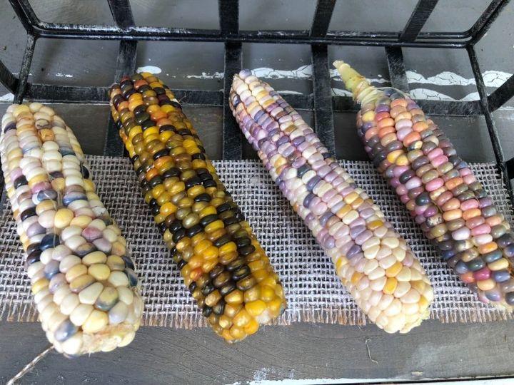 glass gem ornamental corn