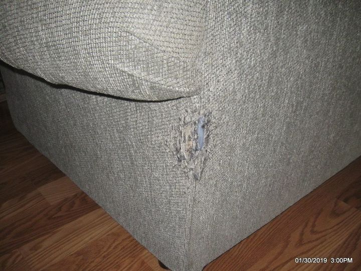 q how do i fix the back of a loveseat where my cat has damaged it