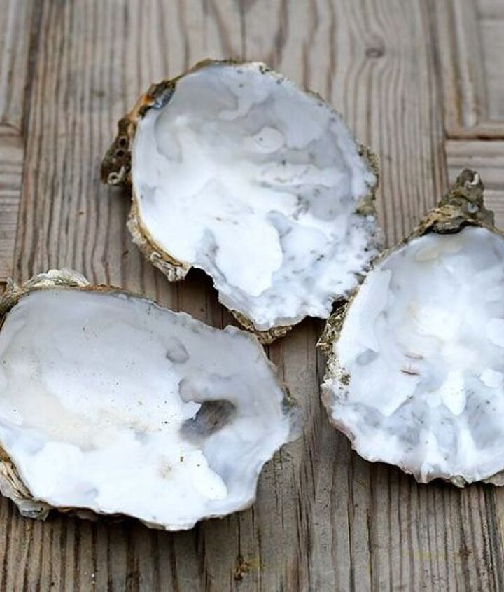 glamourous oyster shell candles