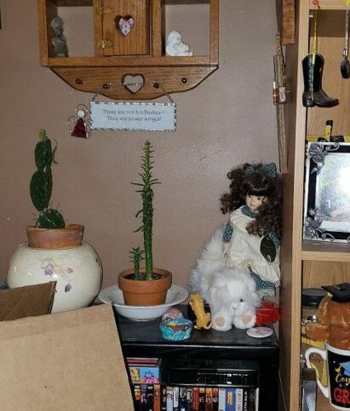 q how do i retransplant 2 different cactuses