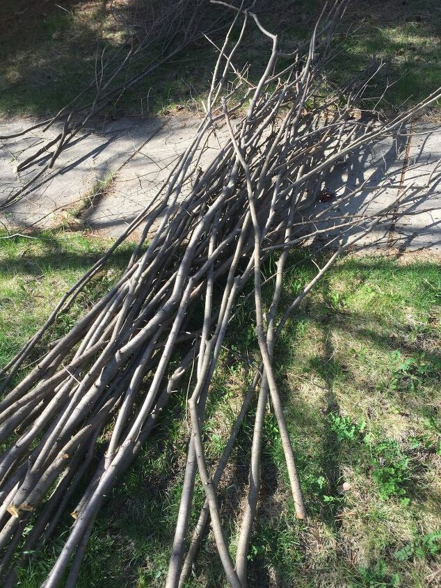Twigs cut into wattle