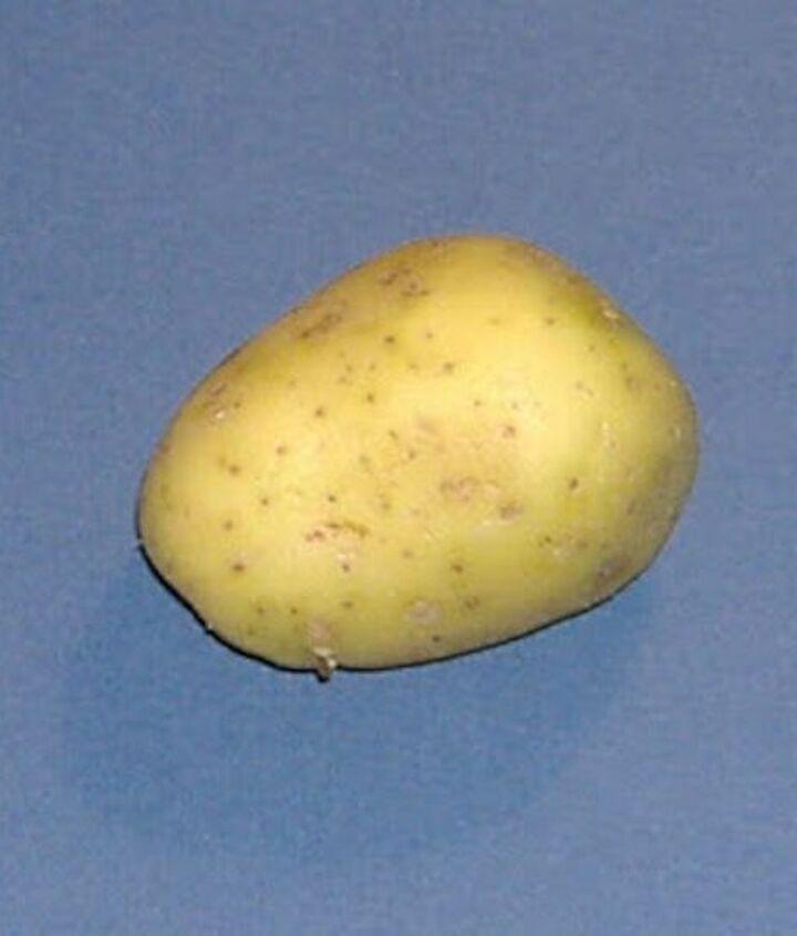 making potato beads