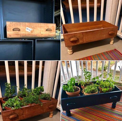 drawer herb garden