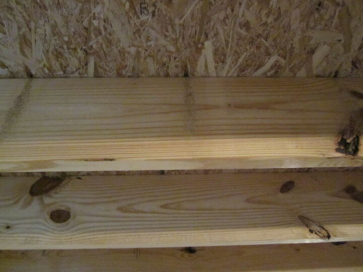 q holes and sawdust on ceiling rafter beams in basement
