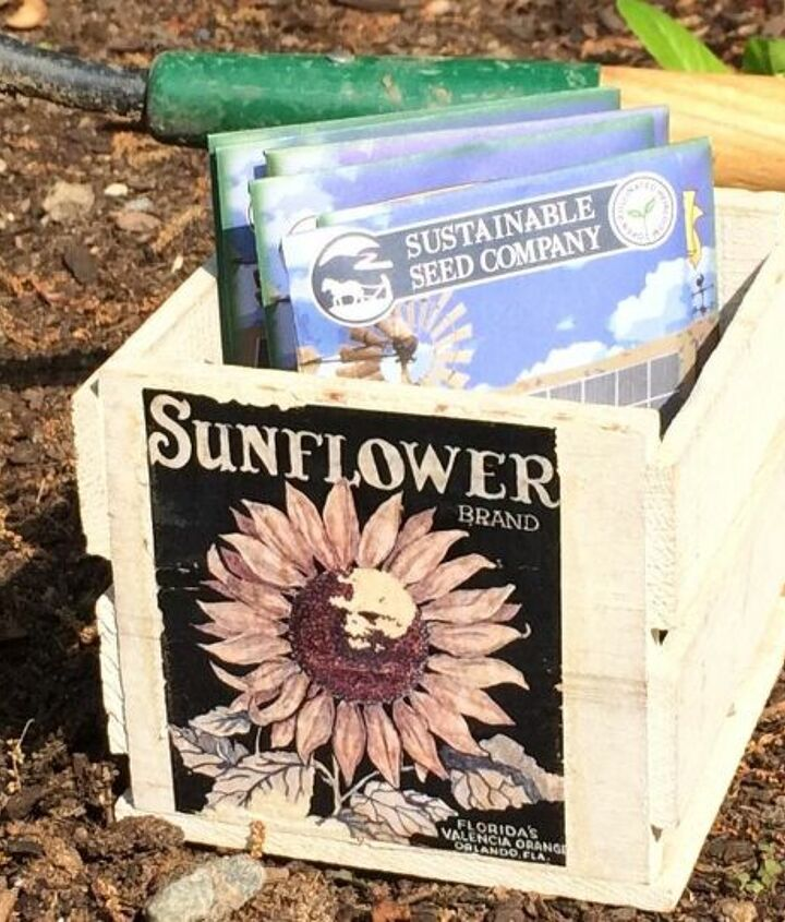 when to sow and plant seeds