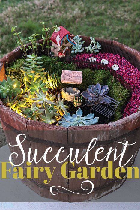 s fairy garden ideas, Succulent Fairy Garden Plants