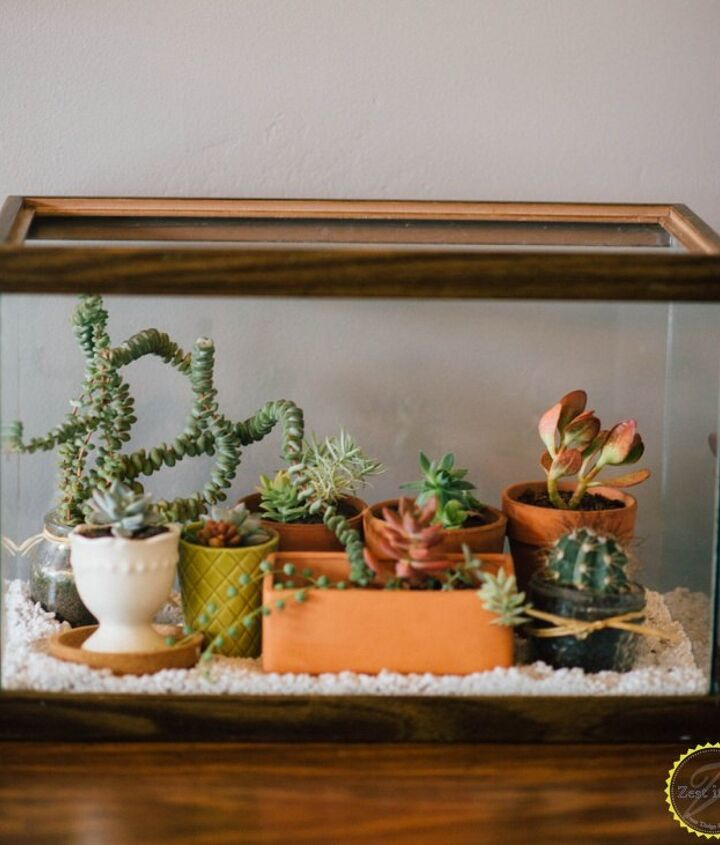 s diy home projects, Turn a Fish Tank into a Terrarium