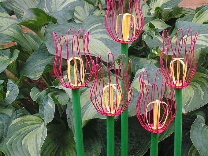 how to create diy repurposed garden tulips