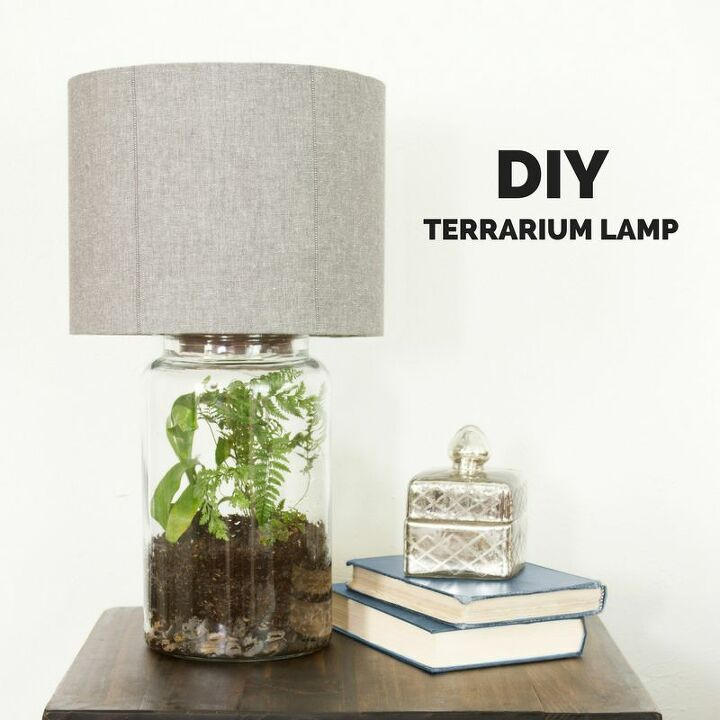 Terrarium in a Lamp Base