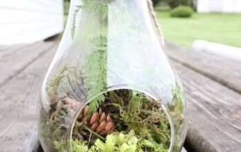Bring Life Into Your Home With A Terrarium