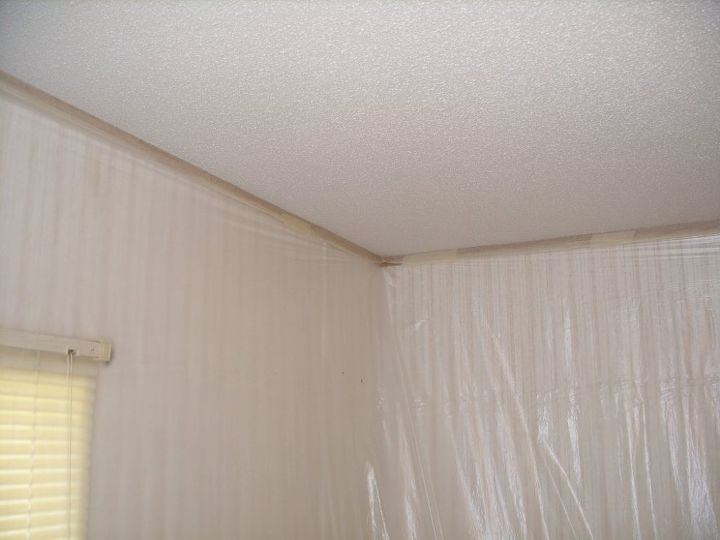 How to Paint a Textured Ceiling (Les and Gina)