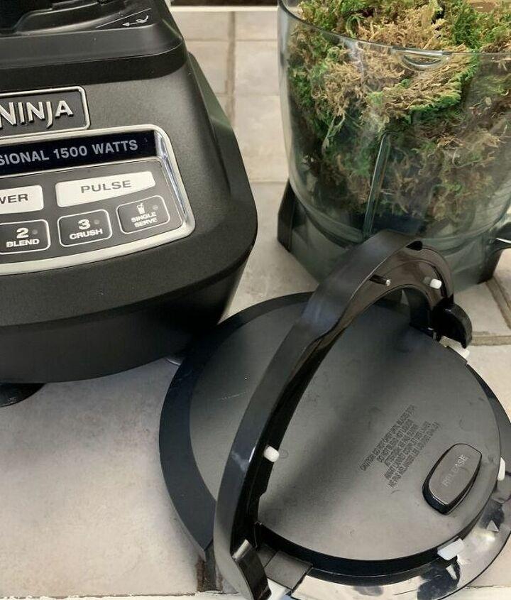 mini moss ball topiary diy