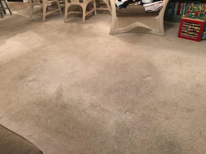 q how to i get the stench out of my carpet