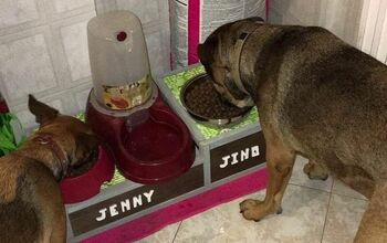 Dog Bowl Stand. Take Care Of Your Dog's Health!!!!!